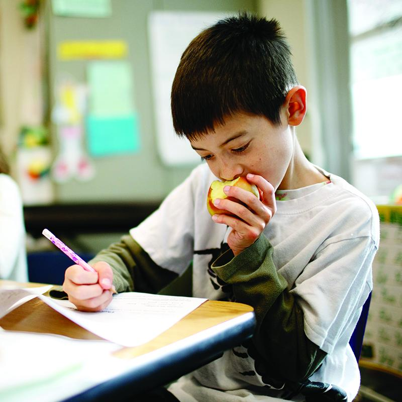 young boy sitting at his desk eating an apple and working on homework