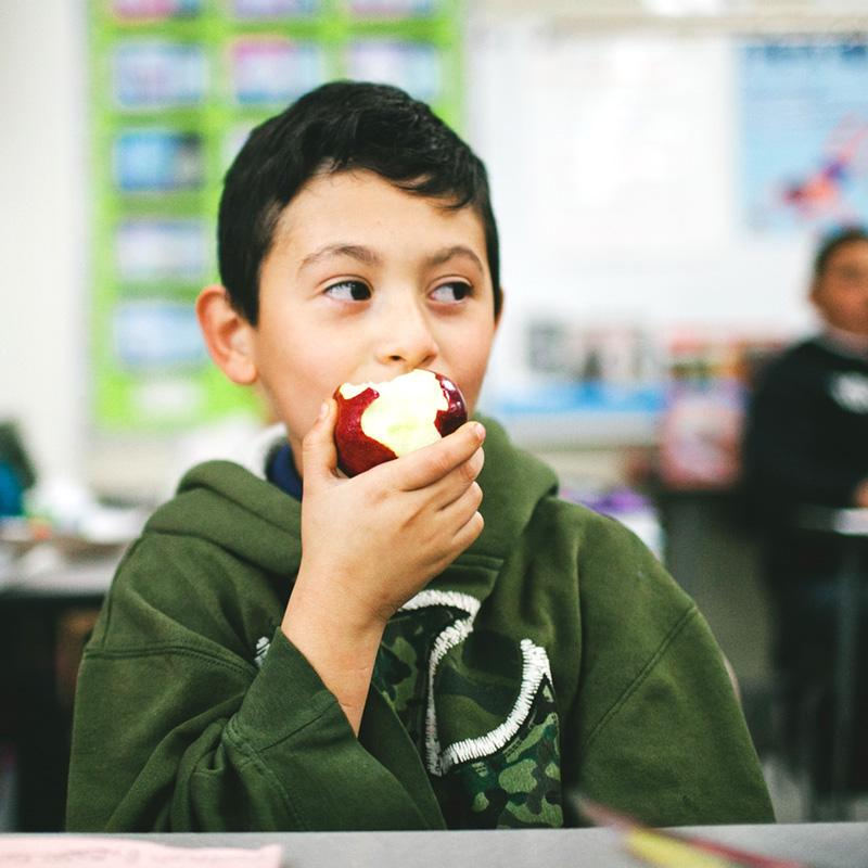 Reduce the Red Tape of Serving School Meals with the Community Eligibility Provision